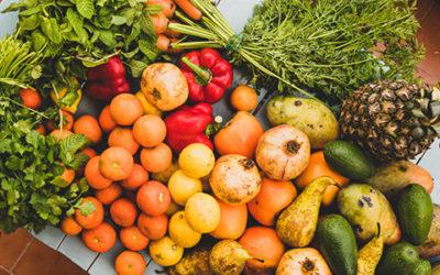 Gesunde Ernährung – Der natürliche Immun-Booster